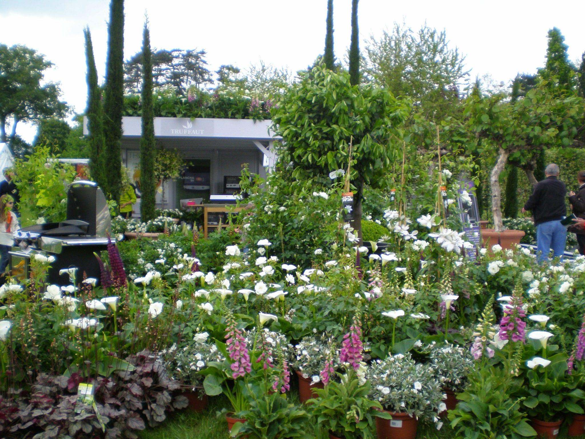 display flower garden