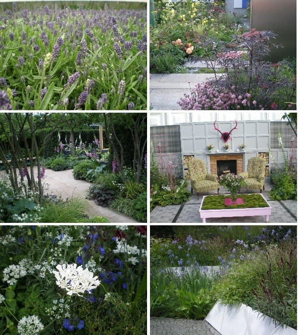 chelsea flower show montage